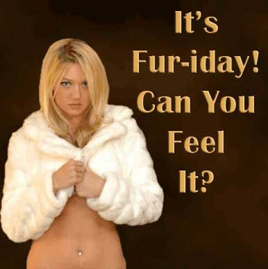 It's Fur-iday can you feel it?