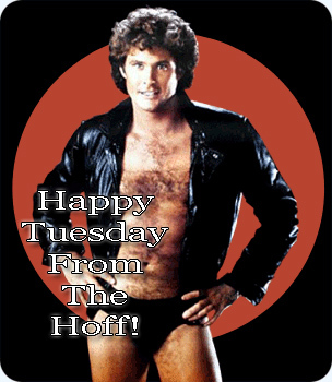 Happy Tuesday From the Hoff!