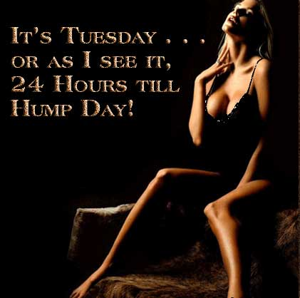 It's Tuesday... or as I see it, 24 hours till Hump Day!