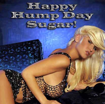 Happy Hump Day Sugar!