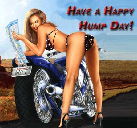 Have a happy hump day!